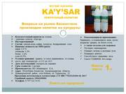 Впервые на рынке Казахстана производим напитки из кукурузы